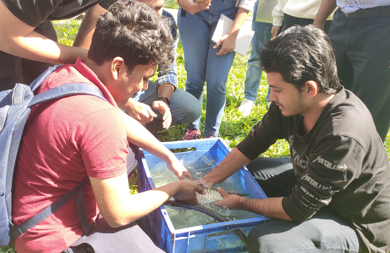 One of the ways in which Tata Power is giving back to the community is by breeding a near-extinct fish – the Mahseer – to ensure its survival